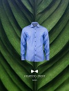 Catalog Samdam J. Harvest & Frost 2020