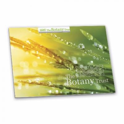 BIC® 101 mm x 75 mm Mini Pencil Booklet