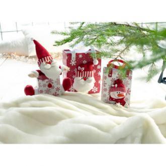 Kerstgeschenkdoos, set van 2